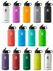 Hydro Flask Stainless Steel Bottle, Wide Mouth w/Straw Lid,